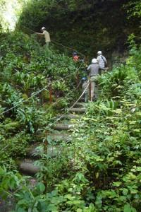 Visiteurs dans un escalier sur le parcours de visite guidée