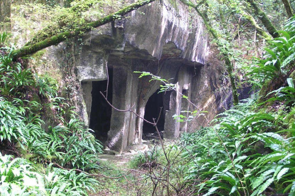 Cathédrale de pierre
